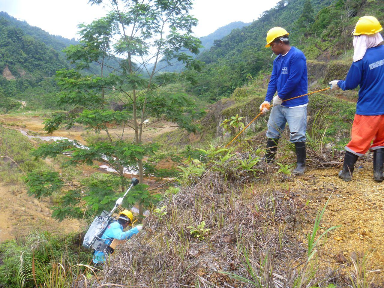 Ground magnetic surveying 2